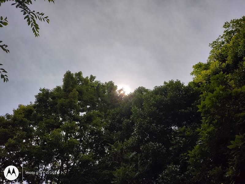 日中標準カメラ逆光